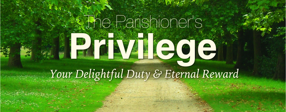 The Parishioner's Privilege - Biblical Counseling