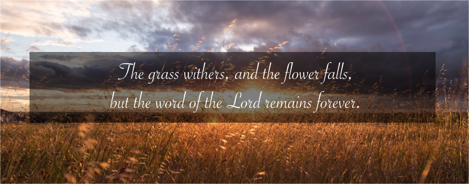 Have you tasted that the Lord is good?