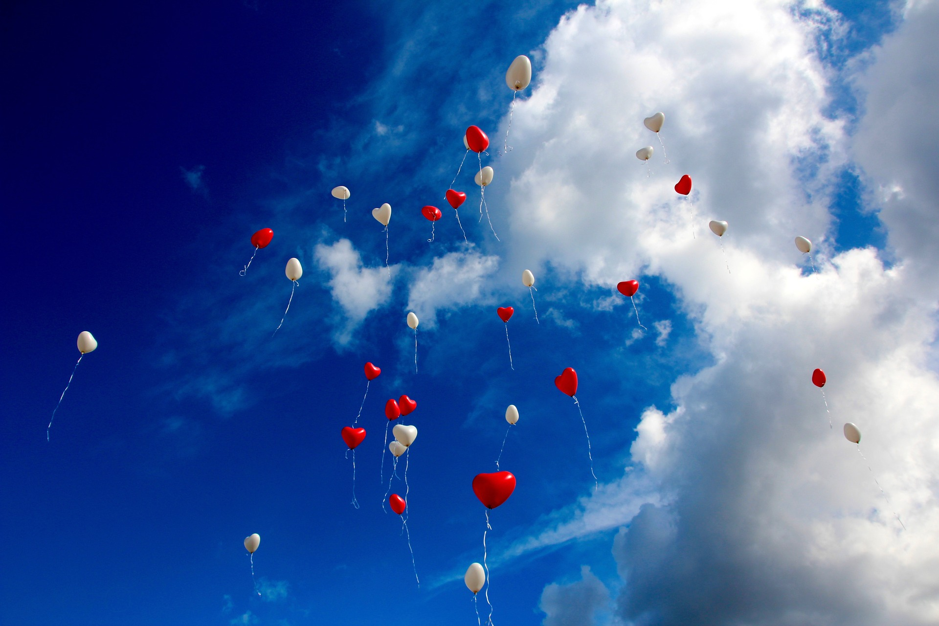 Dozens of red and white heart-shaped balloons floating through bright blue sky